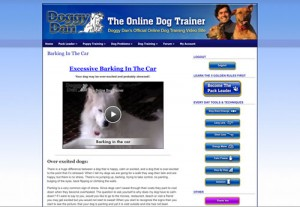 Dog and puppy training queensland