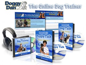 online dog and puppy training video